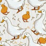 Papel pintado de la historieta con el pato Imágenes de archivo libres de regalías