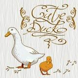 Papel pintado de la historieta con el pato Foto de archivo