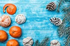 Papel pintado de la madera azul, abierto, mar mandarines Árbol de abeto verde Conos decorativos Espacio para el mensaje de Navida Imagenes de archivo