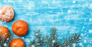 Papel pintado de la madera azul, azul de cielo, mar mandarines, rama verde del abeto Espacio para el mensaje de Navidad y del Año Foto de archivo libre de regalías