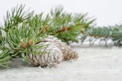 Papel pintado de la Navidad con el árbol de abeto de la nieve Imagen de archivo