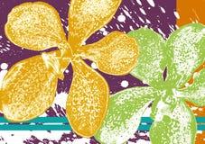 Papel pintado de la orquídea imágenes de archivo libres de regalías