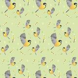Papel pintado de la primavera con los pájaros Fondo imagenes de archivo