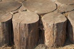 Papel pintado de madera de los tocones Foto de archivo libre de regalías