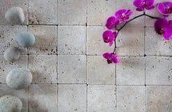 Papel pintado del balneario del zen con las orquídeas y los guijarros rosados del shui del feng Foto de archivo