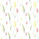 Papel pintado del fondo con los tulipanes de la primavera Ilustración del vector imágenes de archivo libres de regalías