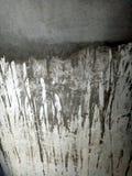 Papel pintado del fondo de la textura de la pared Ejemplo vivo del vector stock de ilustración