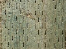 Papel pintado del haz de madera Imagenes de archivo