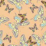 Papel pintado en colores pastel inconsútil del modelo de mariposa Fotos de archivo