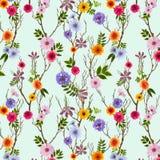 Papel pintado floral adorable, modelo inconsútil con las flores del verano ilustración del vector