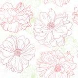 papel pintado floral con las flores de la amapola Imagen de archivo