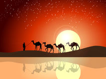 Papel pintado hermoso de la puesta del sol Fotos de archivo libres de regalías