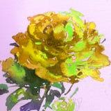 Papel pintado hermoso del fondo de la acuarela de la flor del té del amarillo de la rosa de la belleza de la mano floral abstract Foto de archivo