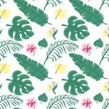 Papel pintado inconsútil alegre del modelo de la playa de hojas verde oscuro tropicales de palmeras y de la ave del paraíso de la ilustración del vector