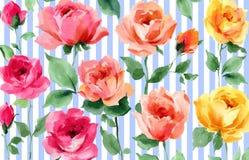 Papel pintado inconsútil de la acuarela de la raya del flor de Rose Flower