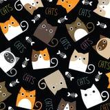 Papel pintado lindo de los gatos Imagen de archivo