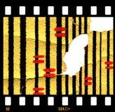 Papel pintado retro viejo rasgado con el marco de película Foto de archivo