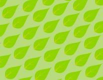 Papel pintado verde de la hoja ilustración del vector