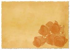 Papel rasgado retro com rosas Fotografia de Stock Royalty Free