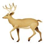 Papel recicl cervos de Papercut Fotografia de Stock Royalty Free
