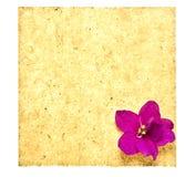 Papel retro com flor imagem de stock royalty free