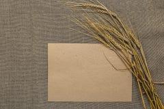 Papel vacío con las espiguillas del trigo Imagen de archivo