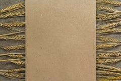 Papel vacío con las espiguillas del trigo Imagenes de archivo
