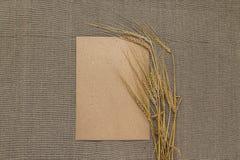 Papel vacío con las espiguillas del trigo Fotos de archivo