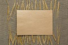 Papel vacío con las espiguillas del trigo Fotografía de archivo libre de regalías