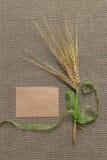 Papel vacío y espiguillas atados con la cinta Fotografía de archivo libre de regalías