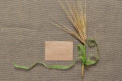 Papel vacío y espiguillas atados con la cinta verde Fotos de archivo libres de regalías