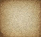 Papel velho com paisly projeto Imagens de Stock
