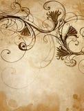 Papel velho com teste padrão floral Fotos de Stock
