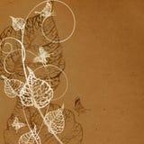 Papel velho com teste padrão floral Imagens de Stock Royalty Free