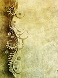 Papel velho com teste padrão floral Foto de Stock