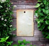Papel velho na parede de madeira foto de stock