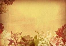 papel velho textured flor Imagens de Stock