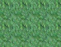 Papel verde Imagem de Stock