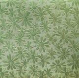 Papel verde com camomiles Foto de Stock Royalty Free