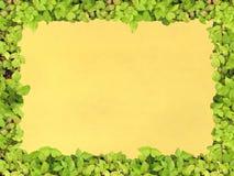 Papel verde do frame ilustração do vetor