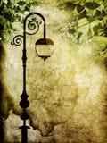 Papel viejo con las hojas de la linterna y del verde Fotos de archivo