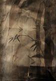 Papel viejo con las ramificaciones de bambú Fotos de archivo libres de regalías