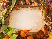 Papel viejo entre las hojas falsas Imagen de archivo