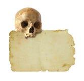 Papel y cráneo viejos Imagen de archivo libre de regalías