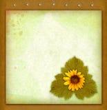 Papel y flor viejos Foto de archivo libre de regalías