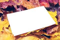 Papel y hojas de arce de nota Imágenes de archivo libres de regalías
