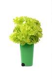 Papelera de reciclaje plástica verde   Fotos de archivo libres de regalías