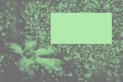 Papeles pintados y fondos de la textura del bokeh de la falta de definición del blog del modelo Imagen de archivo libre de regalías