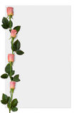 Paper 5. Sheet of paper with pink roses, love letter background border royalty free illustration