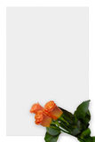 Paper 6. Sheet of paper with pink roses, love letter background border royalty free stock image